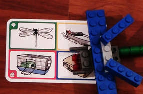 Creationary - Karte mit Libelle