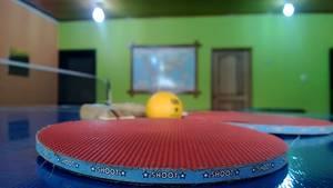 Grundregeln beim Tischtennis für Einsteiger