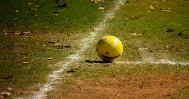 Faustball Regeln