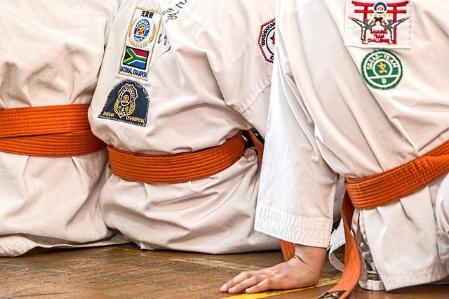 Karate Regeln